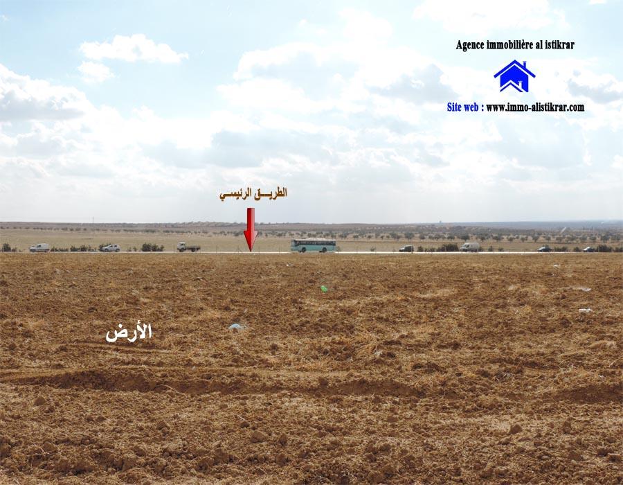 Terrain agricole de 32 hectares sur la rte de sousse for Container sur terrain agricole